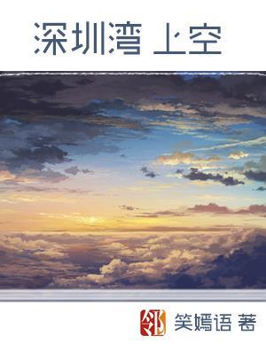 深圳湾上空   (组诗)